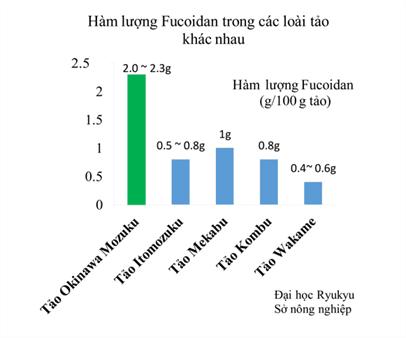 Kết quả nghiên cứu hàm lượng Fucoidan trong các loài tảo khác nhau